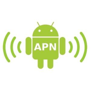 Quale è il significato delle impostazioni APN che si usano per navigare in internet